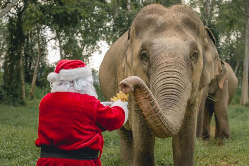 Santa handing out treats at Anantara Golden Triangle