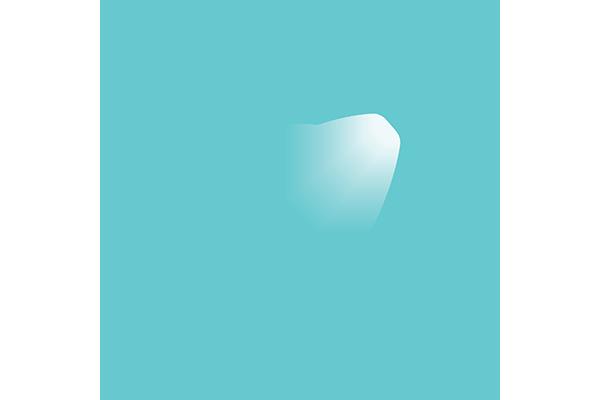 Visit Safe Jersey
