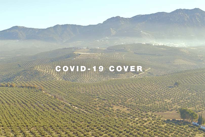 Watch: Andalucia announces free Covid-19 insurance for visitors
