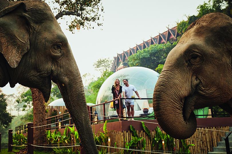 Jungle Bubbles at Anantara Thailand