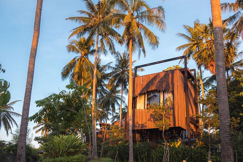A treehouse canopy suite at Nirjhana