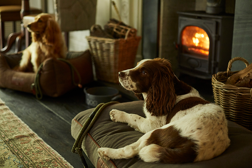Rothay Manor is a very dog-friendly hotel