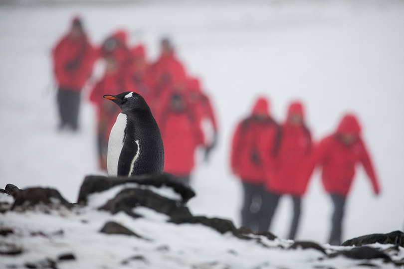 Antarctica-bound guests will have more options now with Silversea
