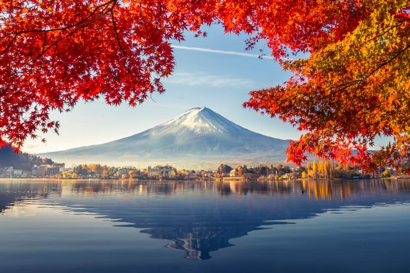 Wendy Wu offers free Japan flights to mark Tokyo Olympics