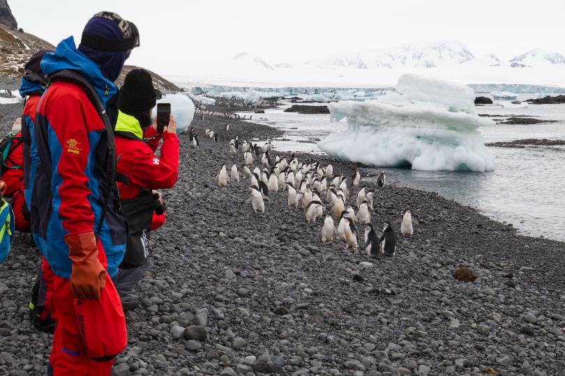 Hurtigruten to take disadvantaged teens on Antarctic expedition